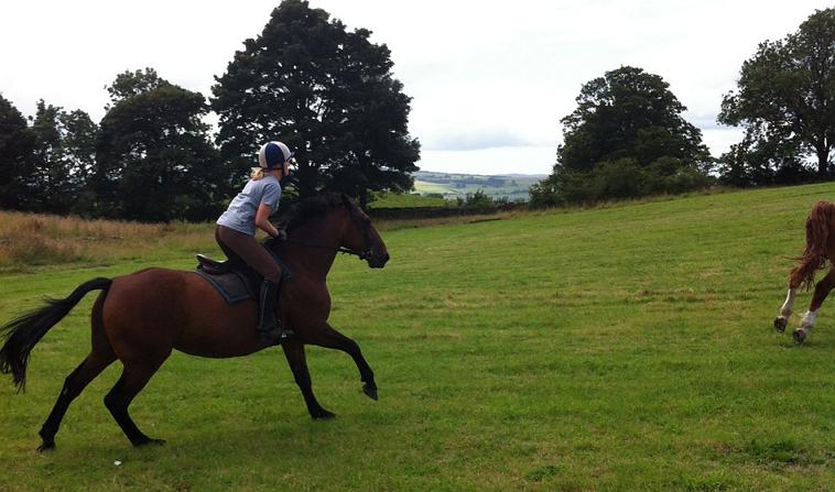 Riding Schools Lake District