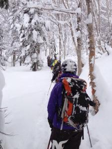 Evergreen backcountry tours